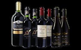 Culinair Wijnpakket met Magnum