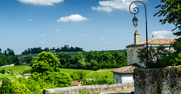 Wijnverhaal Chateau Lestage 2