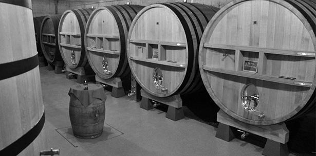 Wijnverhaal Crozes-Hermitage - 1