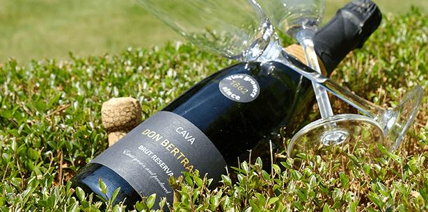 Wijnverhaal Don Bertran Cava - 2