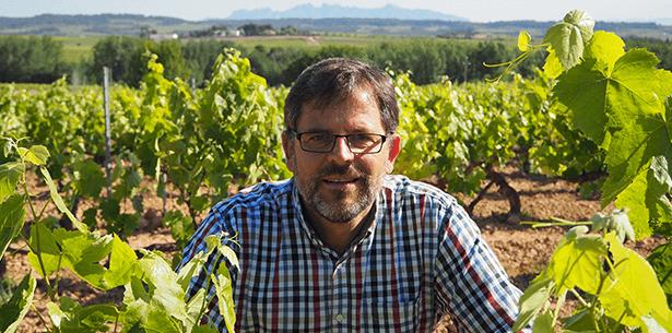 Wijnverhaal Masia Parera Cava Brut 1