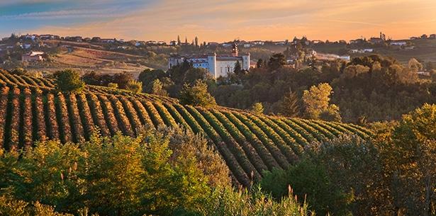 Wijnverhaal Fratelli A&R Barolo Riserva - 1