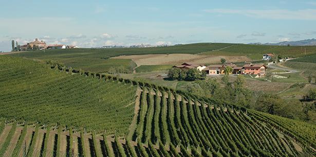 Wijnverhaal Unico Doppio - 2