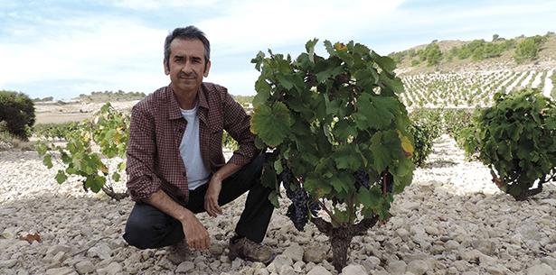 Sfeerbeeld wijnverhaal Baica Barrica Monastrell 2