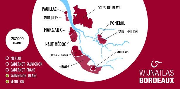 Infographic Bordeaux