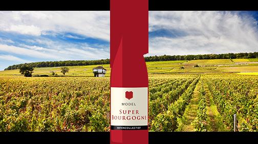 model super Bourgogne Vatencollectief